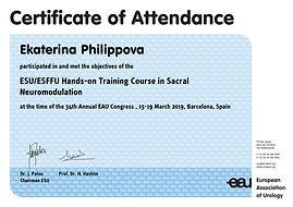 certificate_of_attendance (3)-1.jpg