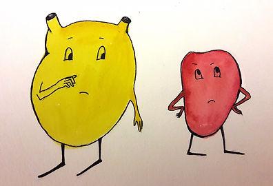 бадди блэддер, хронический простатит, простата