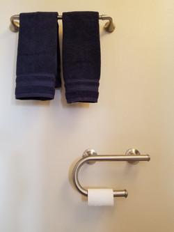 Toilet Paper Holer/Grab Bar