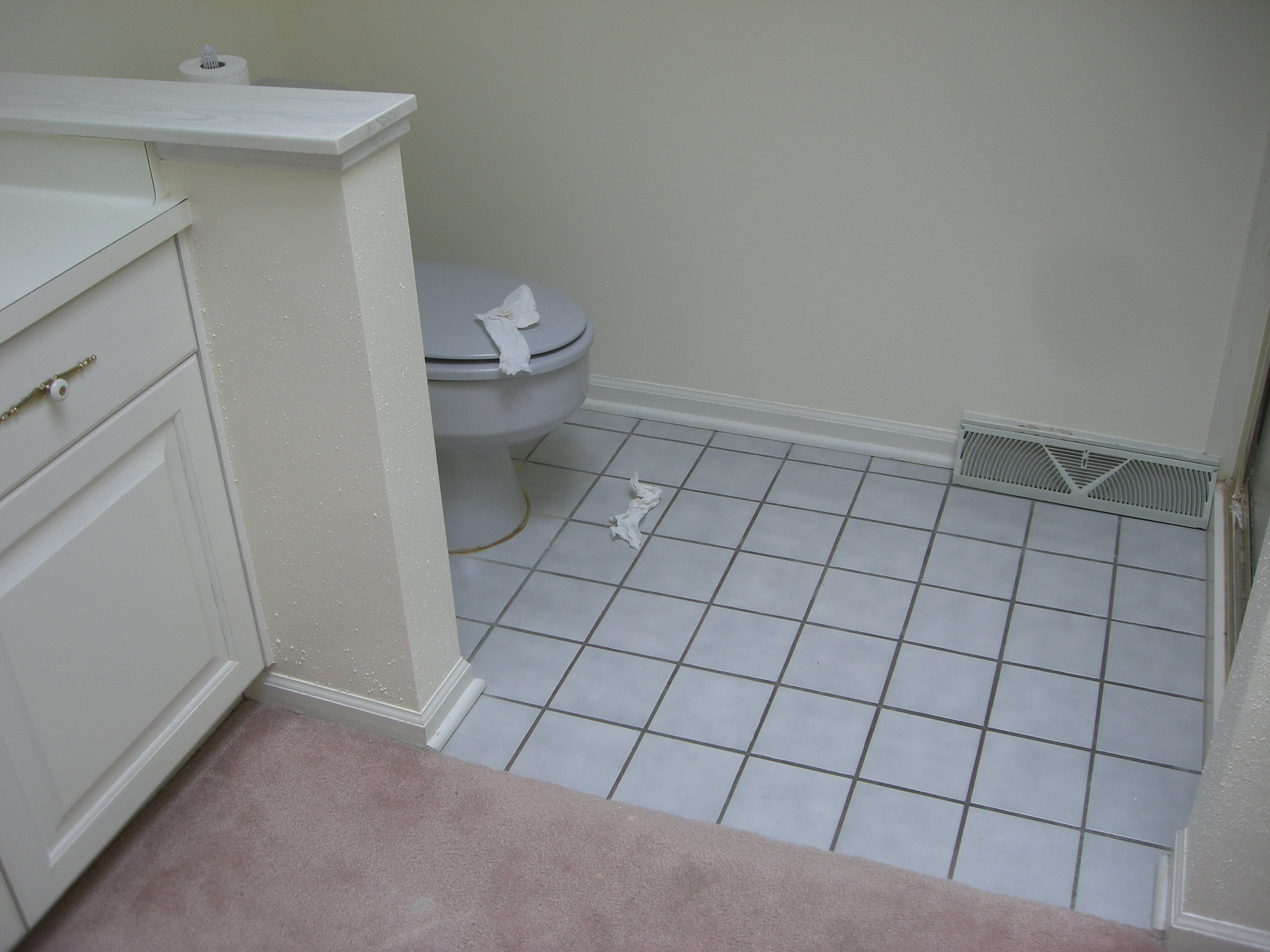 Mauve Carpet & Gray Tile MUST GO!
