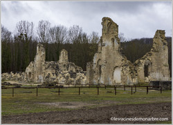 Ruines de l'abbaye de Vauclair