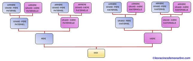 schéma arbre généalogique ascendant