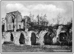 Ruines de l'abbaye Vauclair