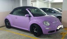 開篷甲蟲-現代-紫-WL