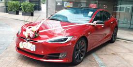 Tesla S 新款-紅色