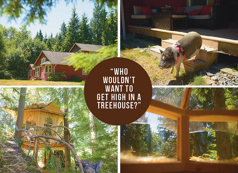 Who wouldn't want to get high in a treehouse?