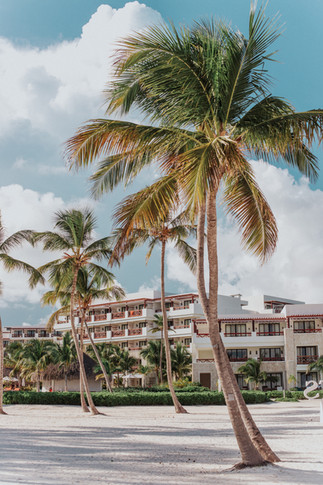 Destinations by Anna (Punta Cana Dominic