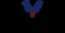 valve_logo.png