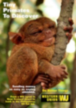 PrimateFinal.jpg
