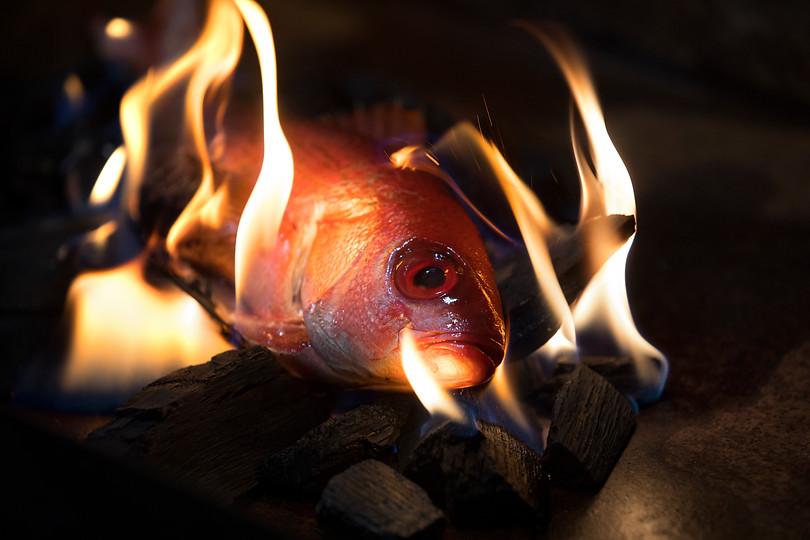 Red Fish High Res - MIAB8675 (1).jpg
