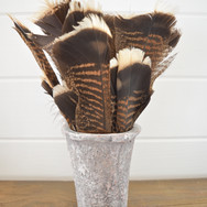 turkey feather set in clay pot  15.  qty. 1
