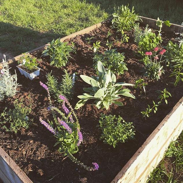 Herbs, flowers, and vegetables....jpg