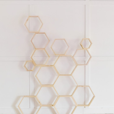 multi hex backdrop  125.  qty. 1 *price includes set up, but not delivery