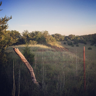 I love our farm! #southernoklahomaweddin