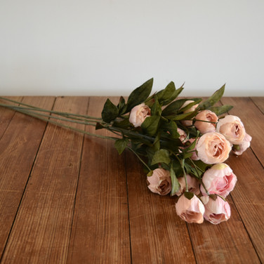 soft peachy pink stems