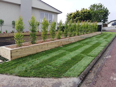 Landscaping south auckland 31.jpg