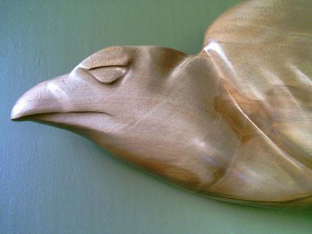 NZ HAAST EAGLE