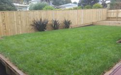Designer gardens lawn