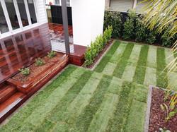 Designer gardens planting