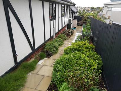 Designer gardens Auckland.jpg