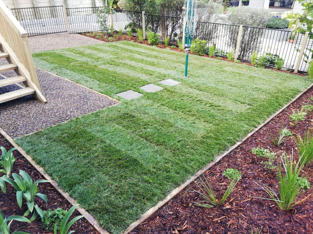 landscaping south auckland 6.jpg