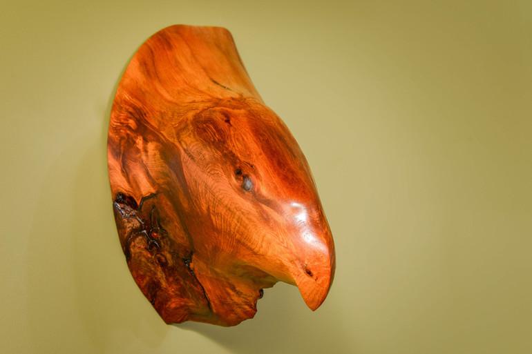 KAKA PARROT HEAD