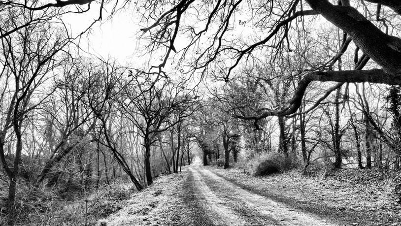 Vias (Hérault) Chemin du Libron