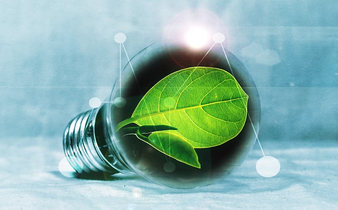 light-bulb-green-leaf.png