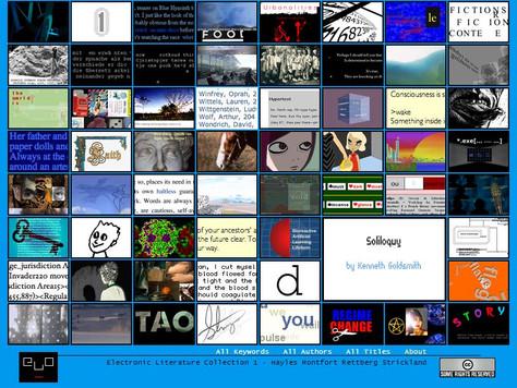 Electronic Literature: a bird's eye view