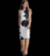 dress-01_edited_edited_edited_edited.png