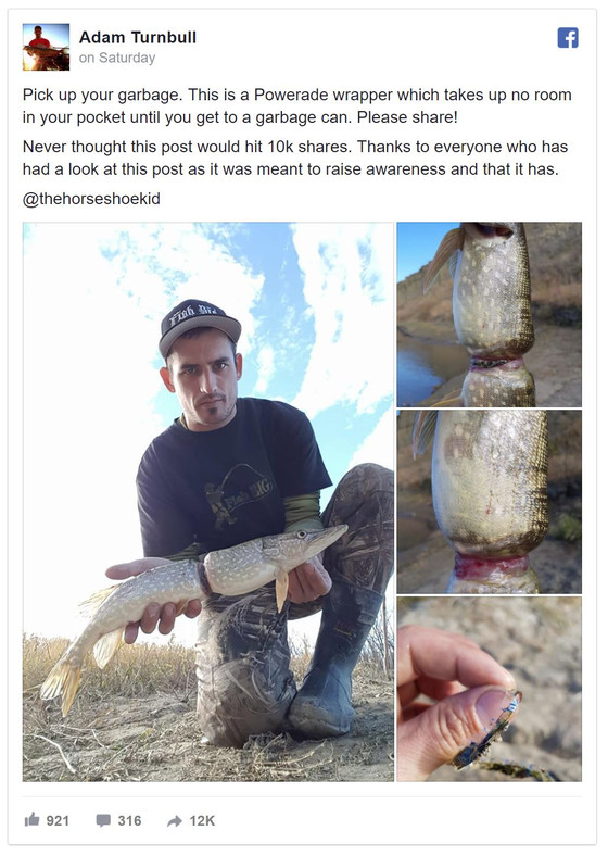 Fisherman catches fish that grew around a drink wrapper