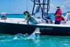 Trip Report: TLA and Tarpon - Boca Grande