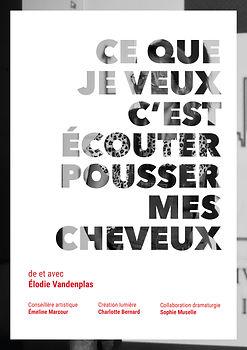 Affiche générique_elodie.jpg