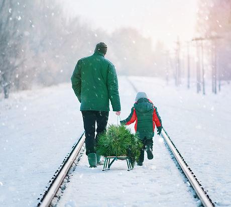 Collecting Christmas Tree_edited.jpg