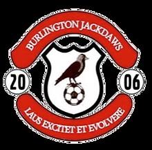 jackdaws logo png.png