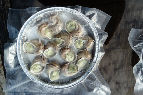 Assiette 12 escargots