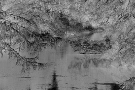 Over Siltcoos Lagoon