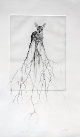Des racines pour grandir