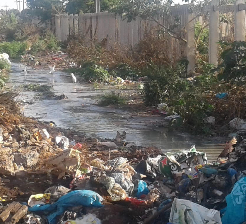Hennops River Restoration and Clean Up Campaign - Litter dumped in the streems