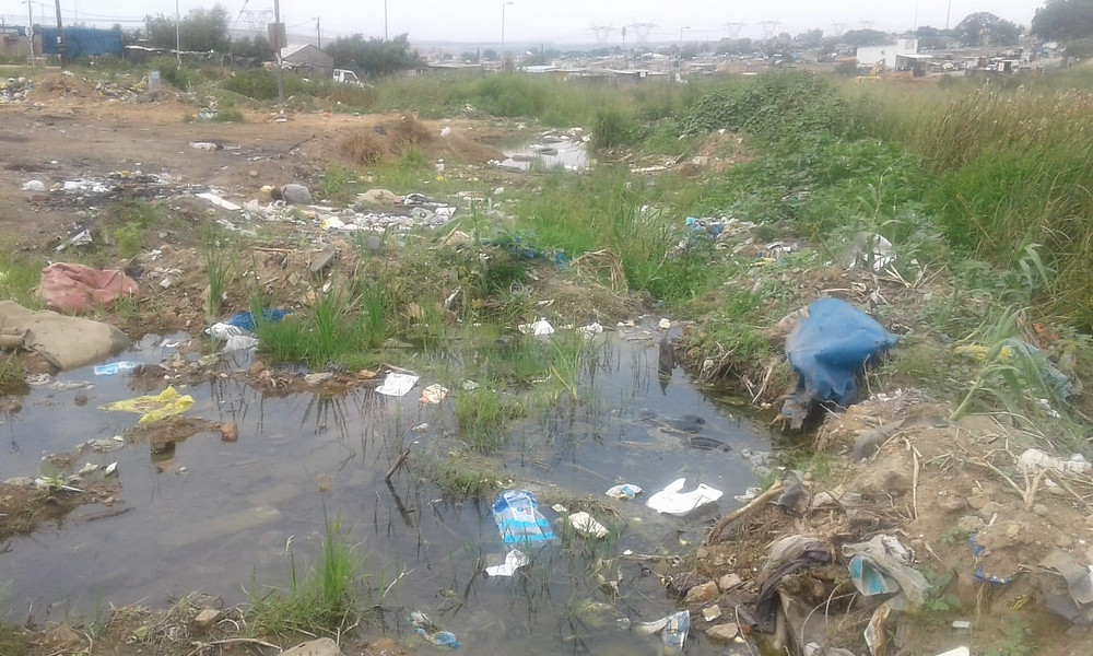 On the issue of public dumping