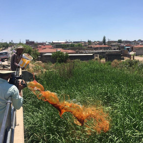 Hennops River Restoration and Clean Up Campaign - Day 1
