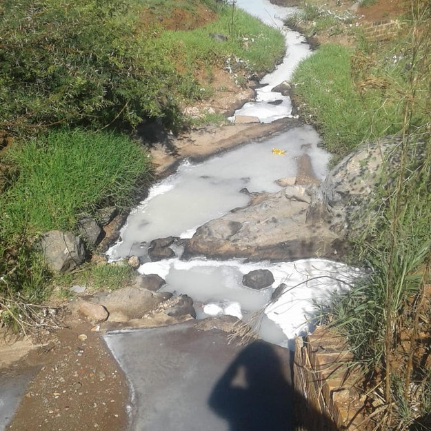 Investigation into allegations of industrial pollution in Hennops river