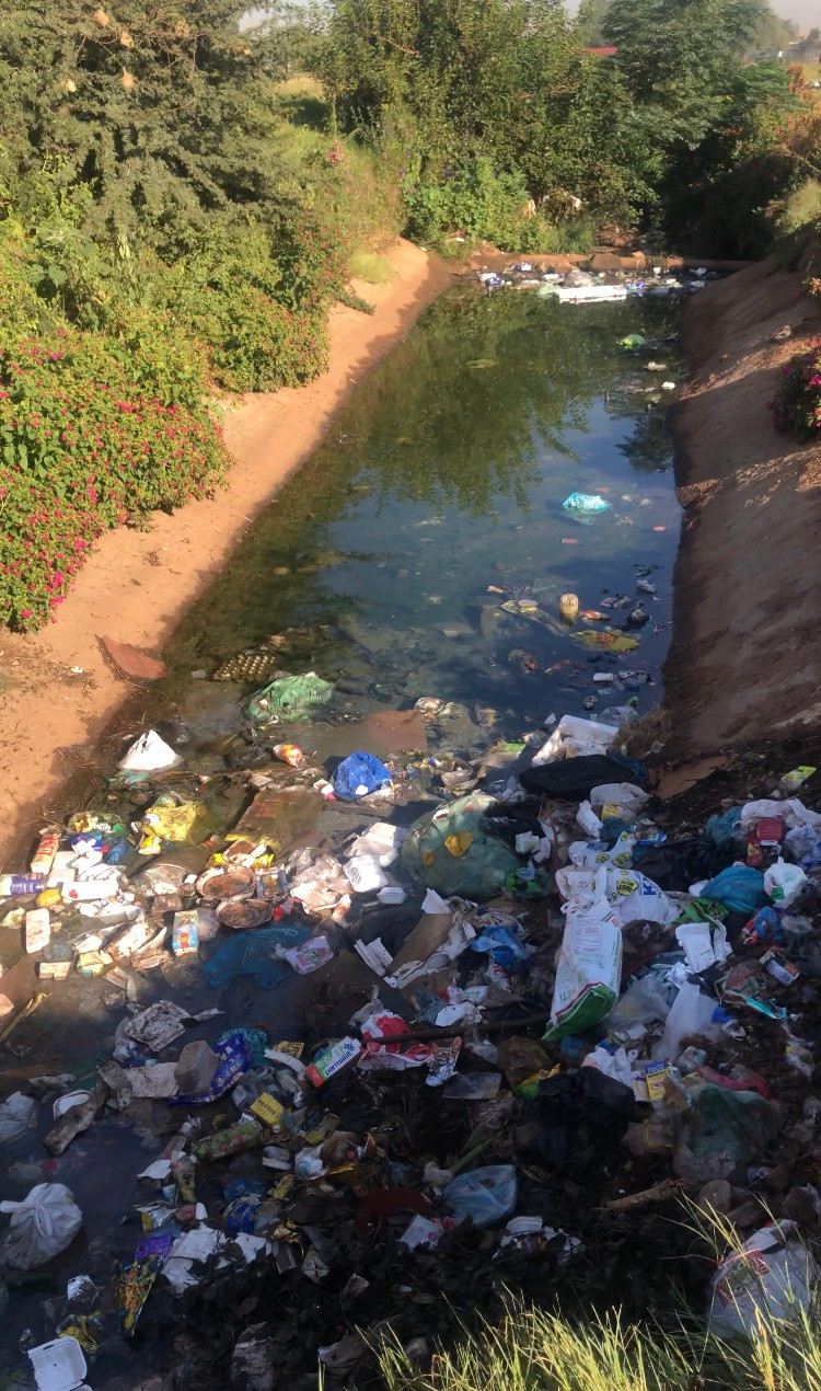 Cleaning the Sedibeng Stream in Tembisa - 29 March 2018