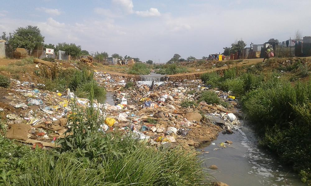 Tswelopile Wetland in Ekurhuleni