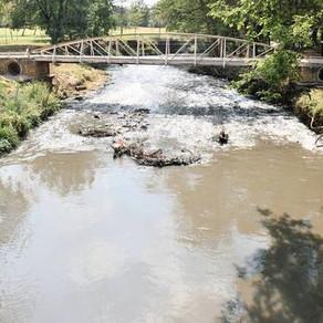 Concern over Hennops River pollution