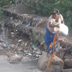 Hennops River Restoration and Clean Up Campaign - Day 4
