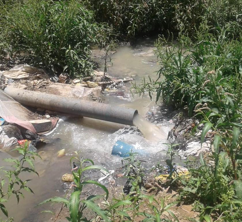 Saving the Kaalfontein Wetland