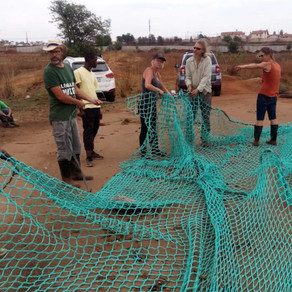fresh.ngo & friends install nets to trap & remove litter from the polluted Hennops river tributaries