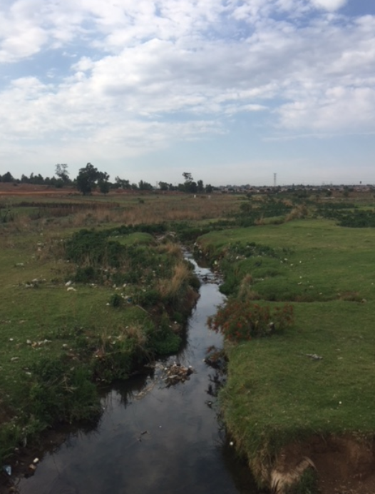 I drove downstream to where the Sedibeng stream enters Clayville, becoming the Clayville tributary. Apart from litter, the stream is still clear and does not appear to be polluted by sewage.