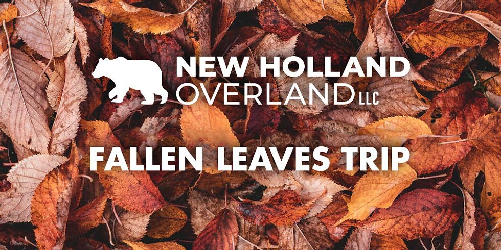 NHO - Fallen Leaves Trip